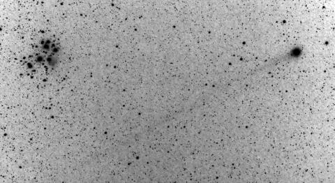 Der lange Schweif des Kometen Lovejoy C2014/Q2