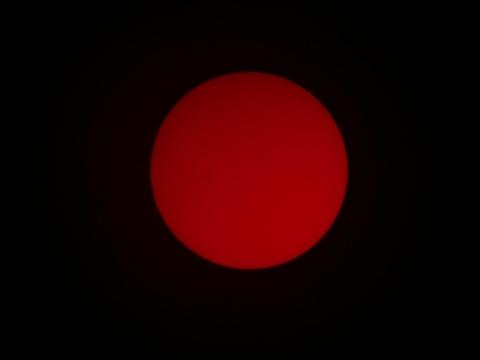 Sonne H-Alpha 01. April 2012